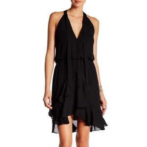 Parker Diane Ruffle Assymetrical dress